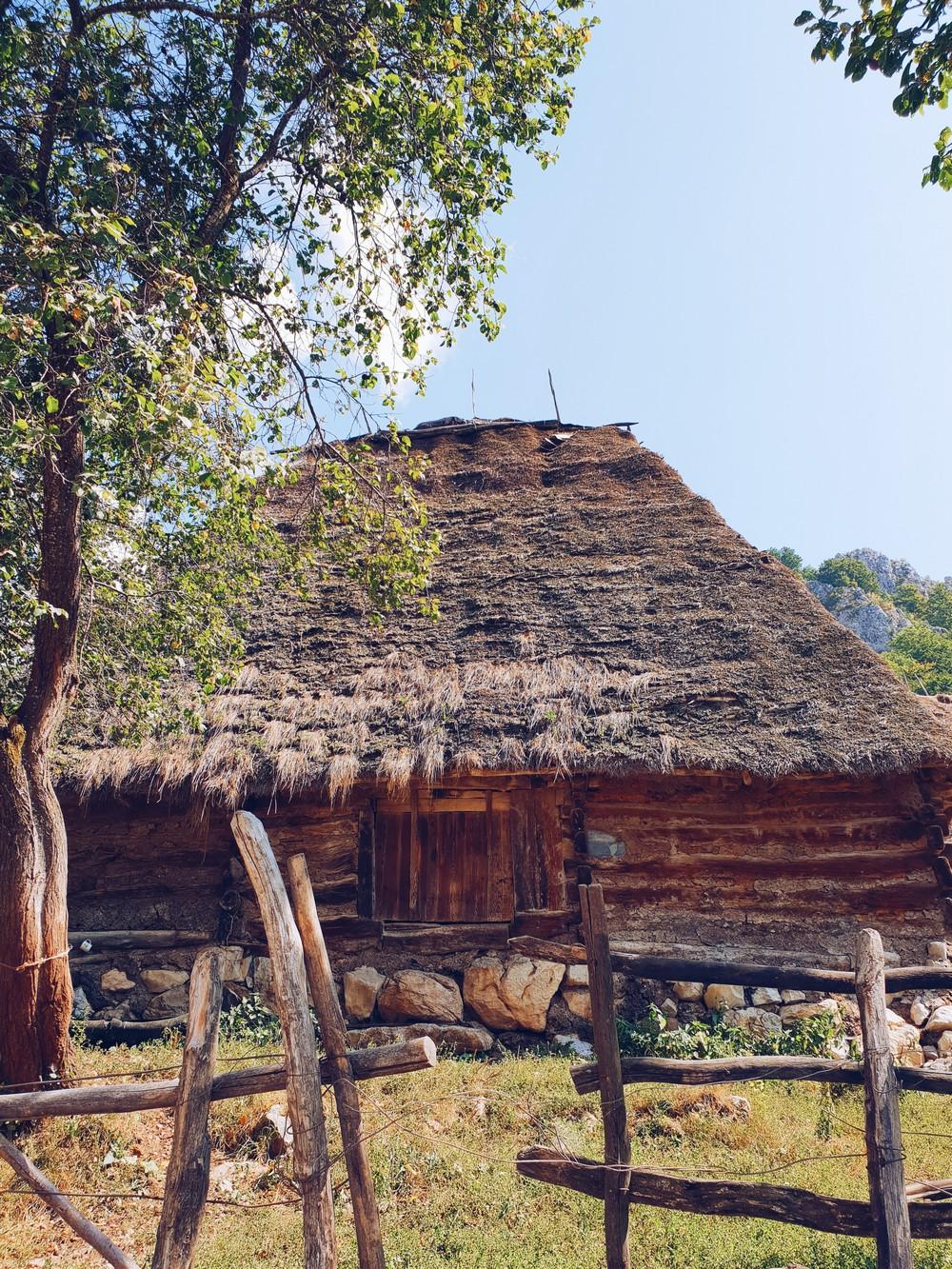 Heritage Trip Alba  25